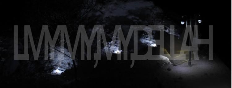 LMY, MY, MY, DELILAH - MATHIEU SCHMITT - 2014